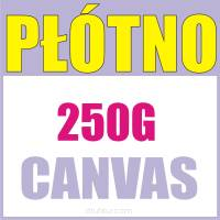 Płóno Canvas malarskie 250g